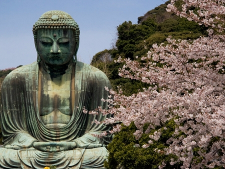 Admire the Daibutsu, a 13-metre high statue of Buddha