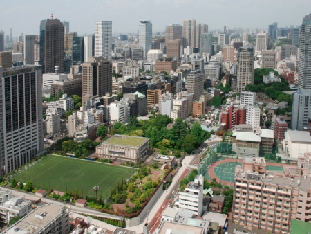 Visit the city, the Buddhist temple of Senso-ji, Harajuku and Shibuya districts and Yoyogi Park