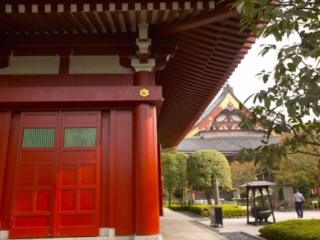 Temples of Kyoto, Gion and Pontocho districts