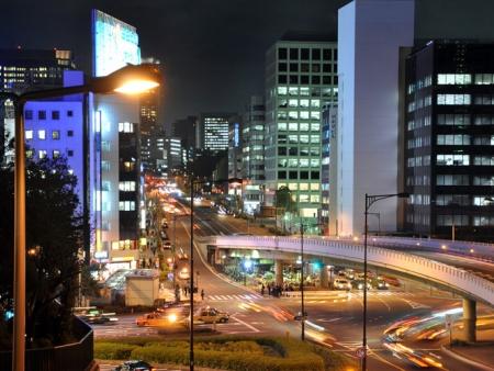 Tsukiji Market, Shinjuku district, Harajuku and Shibuya and Yoyogi Park
