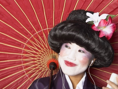 Temples, Gion, Geisha and Pontocho districts