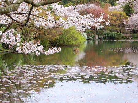 Temples, Kego Falls, cruise on Lake Chuzenji and Ryuzu no Taki Falls