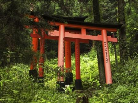 Todai-ji temple and Nara National Park