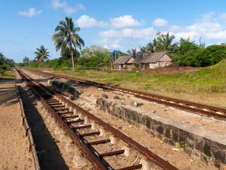 Paysages et vie locale malgache en train