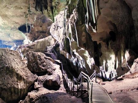 Visiting the Gomantong and Sandakan caves