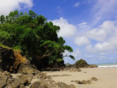 Le paradis naturel de la péninsule d'Osa