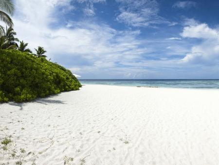 Sur mon île privée…