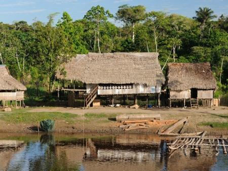 Croisière en Amazonie…