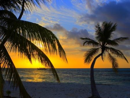 Découverte de Miami