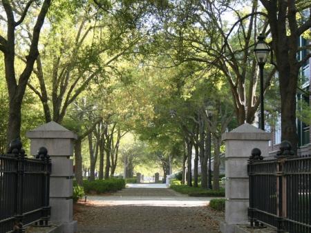 Visite de la ville de Charleston