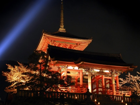 Do not miss Nijo Castle