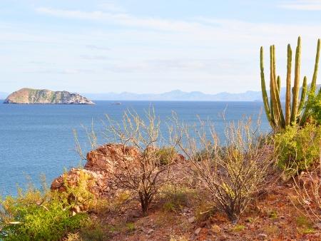 Un oasis et un petit coin de France au Mexique !