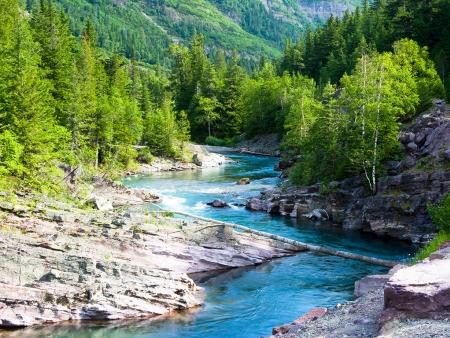 Paysages somptueux du Parc National de Glacier