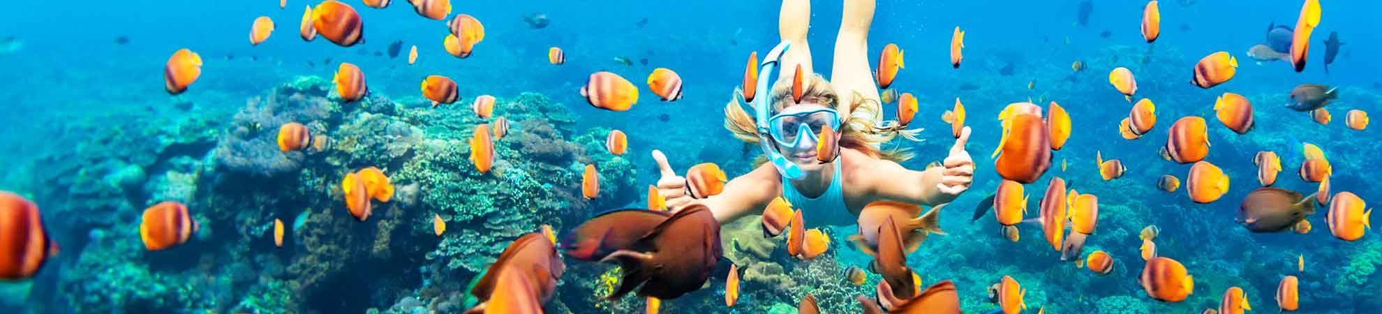Comment préparer votre séjour et vos vacances Hawaii